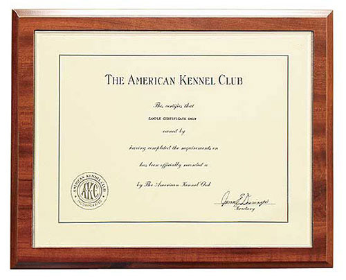 Wood Certificate Plaque Printing | Malaysia Supplier